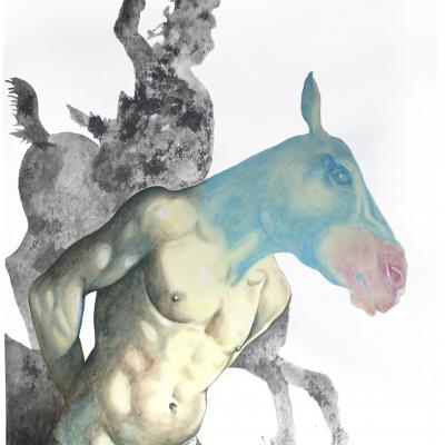 Don Quichotte Chevalier / elia pagliarino / 83 x 119 cm