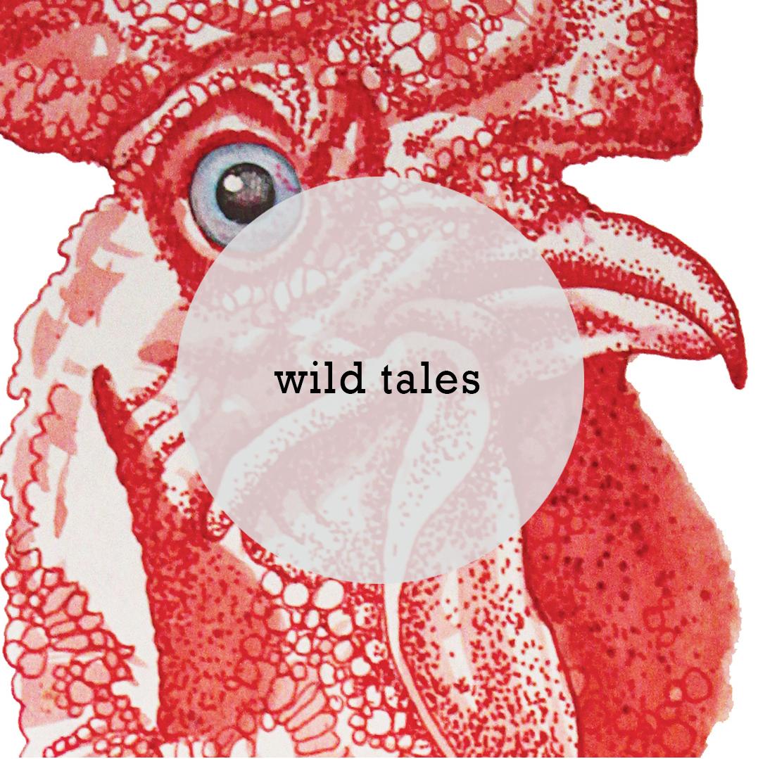 Wild tales 5